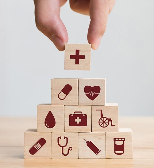 Proactive Health Care Concept with Building Blocks of Health